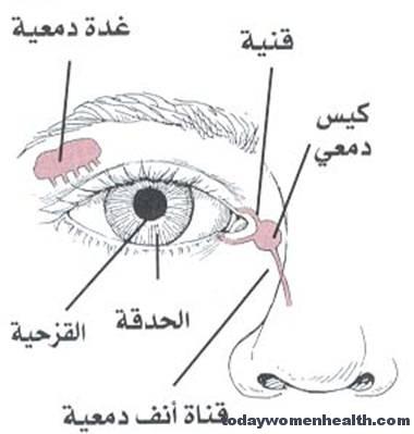 انسداد القناة الدمعية عند الاطفال وكيفية علاجها