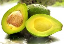 -أسباب العناية Avocado-250x173.jpg?