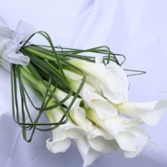 كيف تختارين طرحة الزفاف المناسبة ؟