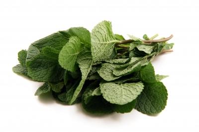أهم الأعشاب التي تساعد في التخلص من الإمساك