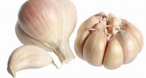 الثوم و فوائده الصحية المتعددة